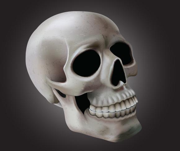 skull-illustration_thumb