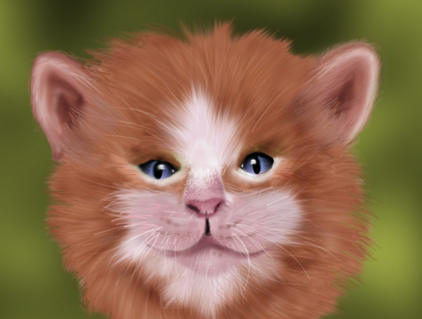 realistic-cat-fur