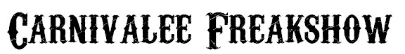 retro-fonts-27